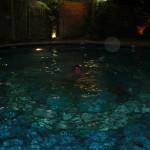 Vesipeto vaihteeksi altaassa :)