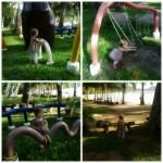 Leikkipuistossa.