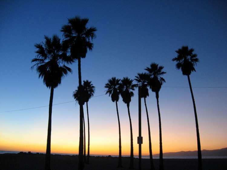 Venice beach, Los Angeles, Kalifornia